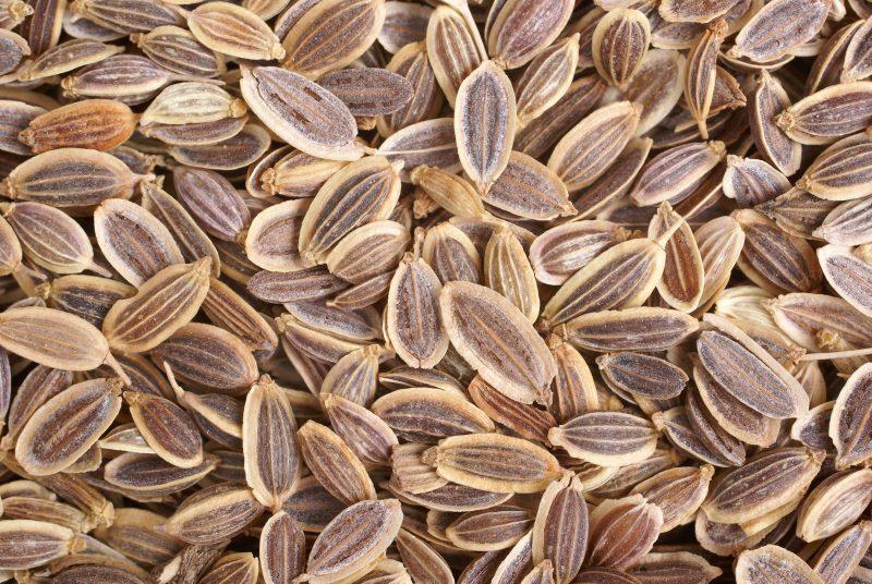 семена укропа при похудении