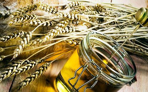 Колоски пшеницы и масло